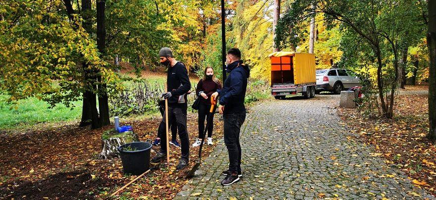 REGION, Szczawno-Zdrój: Posadzili drzewka