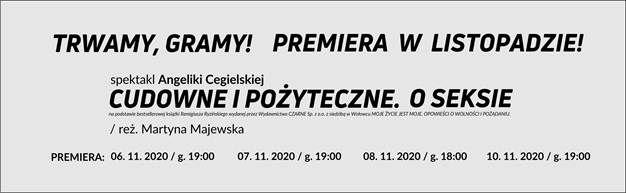 Wałbrzych: Premiera w Szaniawskim