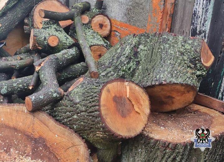 REGION, Boguszów-Gorce: Drewno ukradł ze szkoły