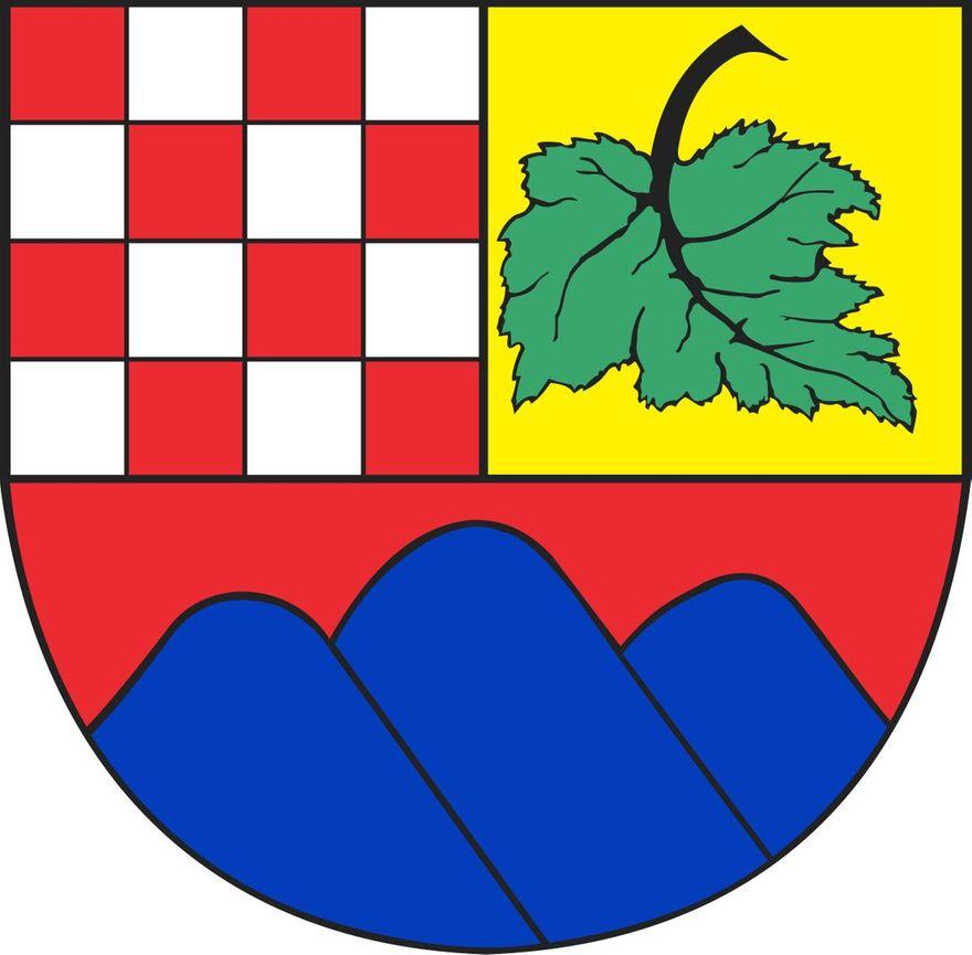 REGION, Boguszów-Gorce: Pięcioro kandydatów
