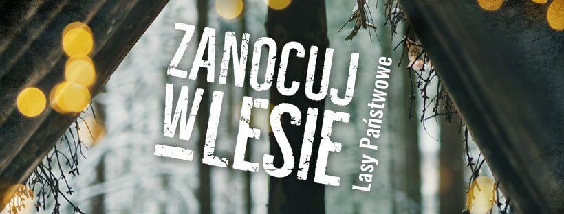 Wałbrzych/Kraj: Nocowanie w lesie