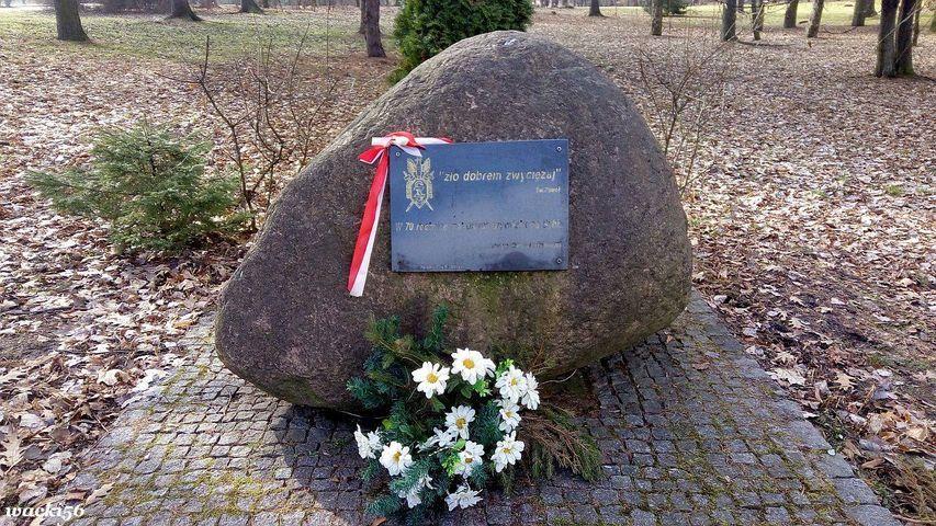 Wałbrzych/REGION: Konkurs dla uczniów
