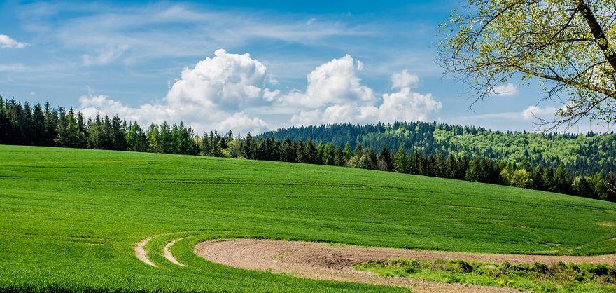 powiat wałbrzyski: Na drogi dojazdowe