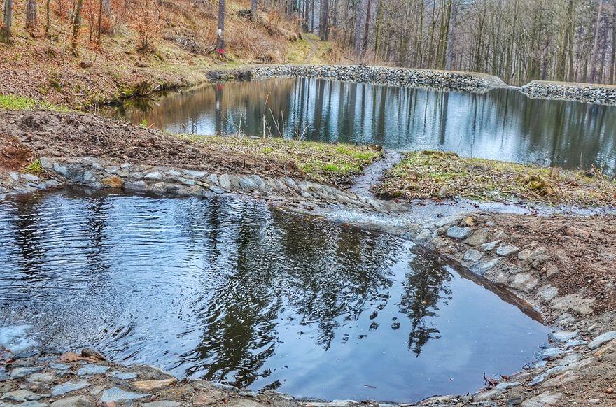 REGION, Jedlina-Zdrój: Więcej wody w lesie