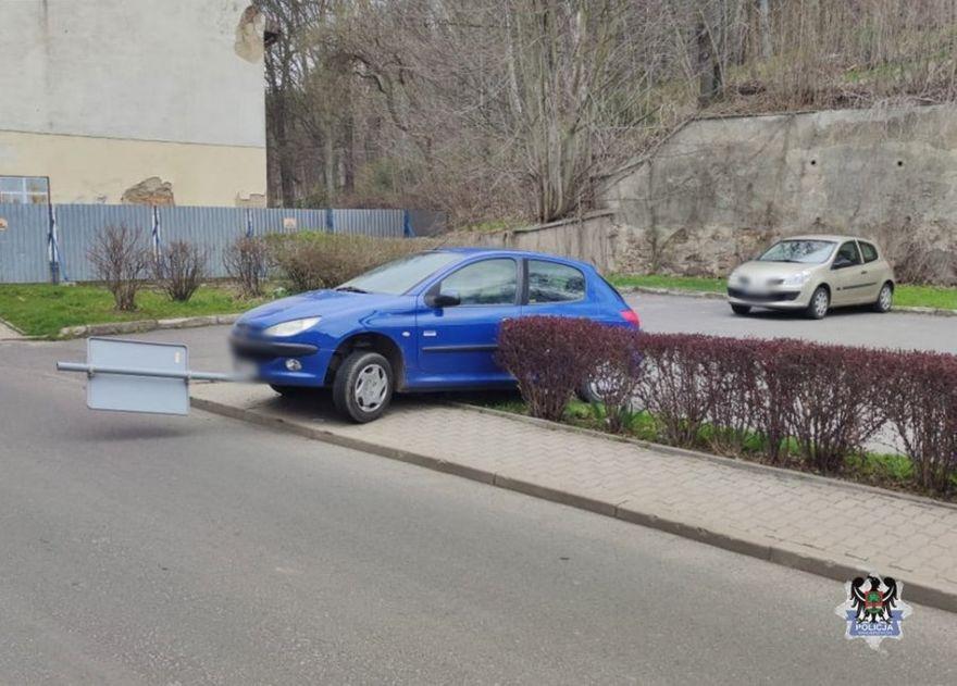 Wałbrzych/Jedlina-Zdrój: Wjechała w żywopłot