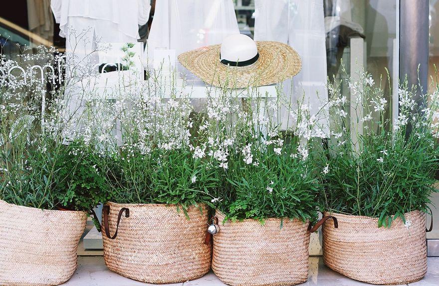Wałbrzych/Kraj: Wiosenny klimat nie tylko za oknem – pomysły na wiosenne dekoracje w domu