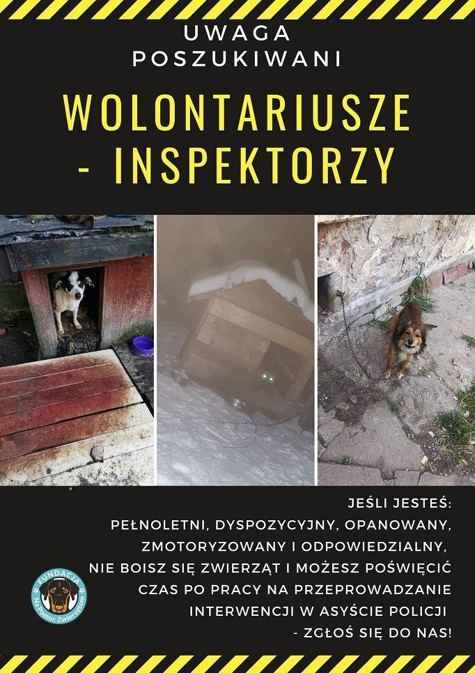 powiat wałbrzyski: Poszukują wolontariuszy