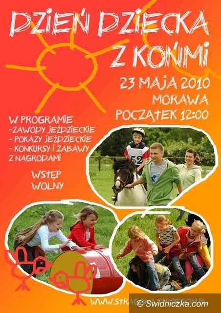 Morawa: Z końmi na wesoło