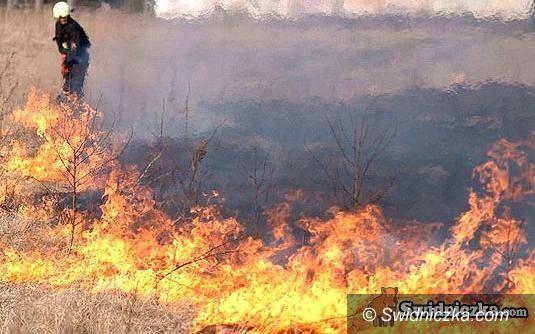 powiat świdnicki: Całonocna walka z pożarem, dwie kobiety w szpitalu