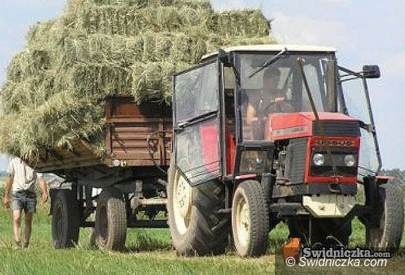 Milikowice: Cztery miliony pójdą w glebę w Milikowicach