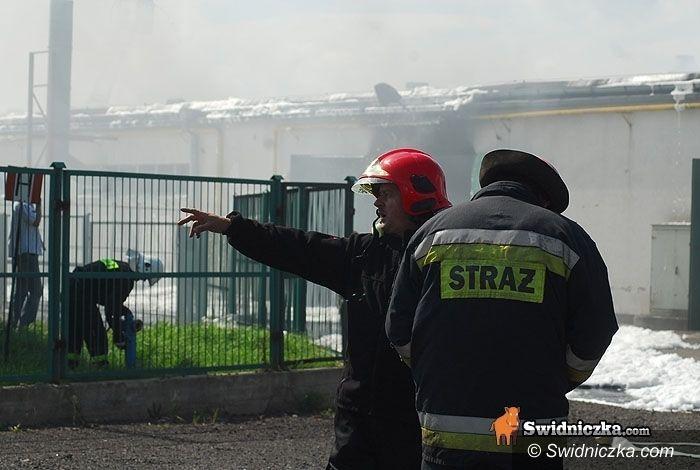 Świdnica: 5 mln zł strat w wyniku czwartkowego pożaru