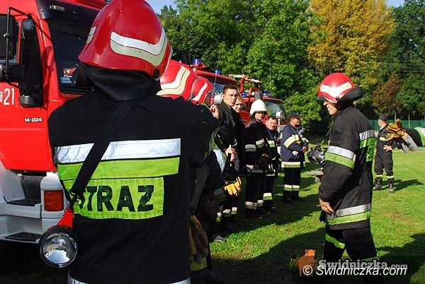 Świdnica: Strażacy kontra drzewa