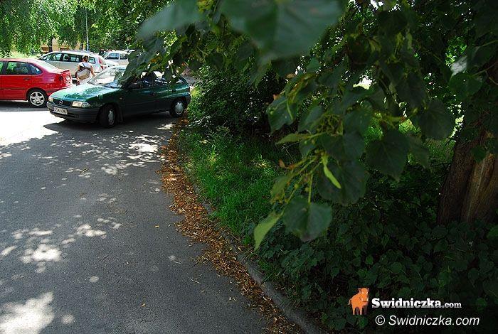 Świdnica: Przycinają drzewa, mieszkańcy Parkowej dojadą do domów bez problemów