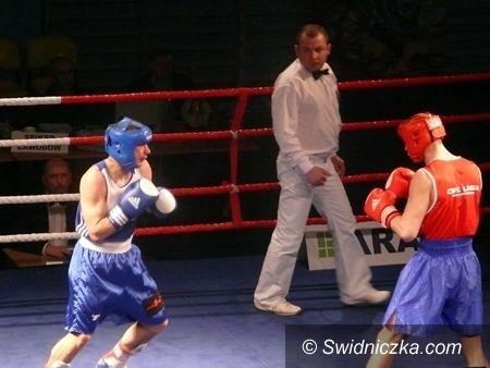 Świdnica: Świdnica opanowana przez bokserów