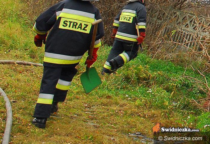 Witoszów Dolny/Świdnica: Pięciu strażaków i jeden cywil – grupa podpalaczy ujęta