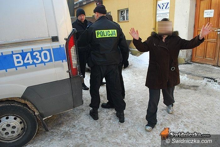 powiat świdnicki: Bilans 2010: Pod paragrafem – mordercy, pedofile, wibratory