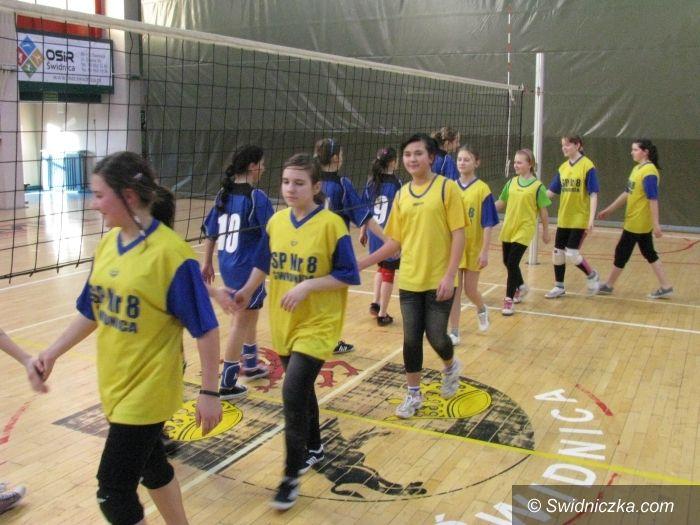 Świdnica: Turniej mini siatkówki dla uczennic SP 1