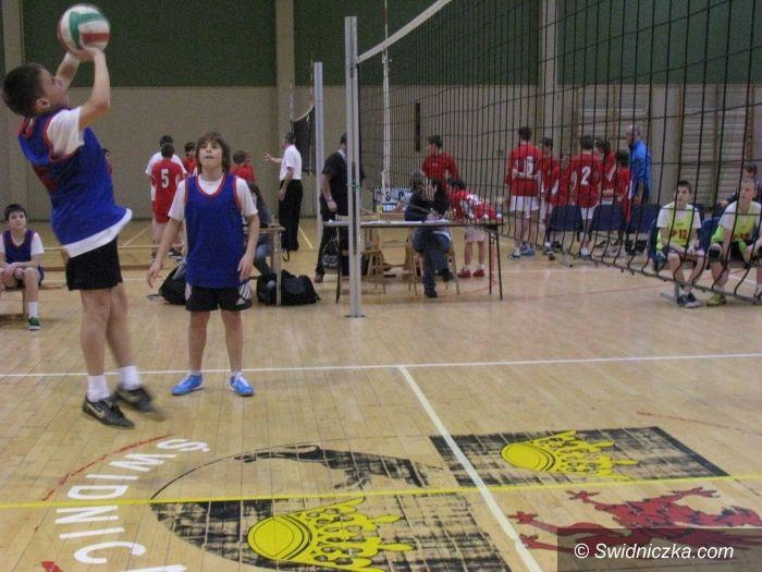 Świdnica: Dominacja SP 1 w turniejach mini siatkówki