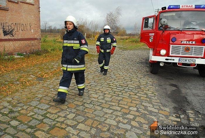powiat świdnicki: Z pracy strażaków: świeczka na komodzie, sarna w rzece