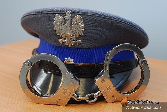 Świdnica: Altankowi włamywacze ujęci