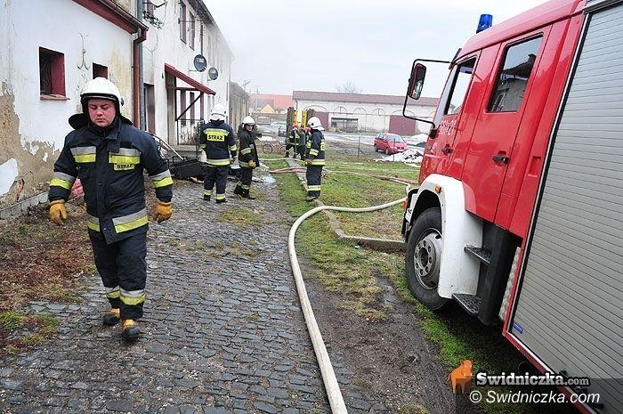 Rogoźnica: Strażacy z dwóch powiatów gasili bliźniaka