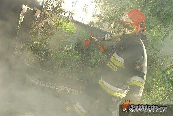 powiat świdnicki: Pożar przez... kota