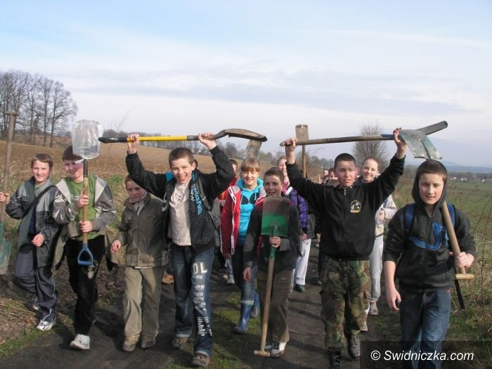 Mokrzeszów: Młodzi ekolodzy z Mokrzeszowa sadzą lasy