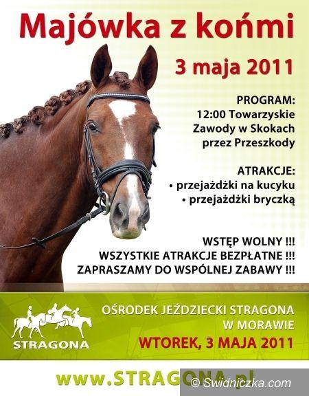 Morawa: Majówka z Końmi w Morawie