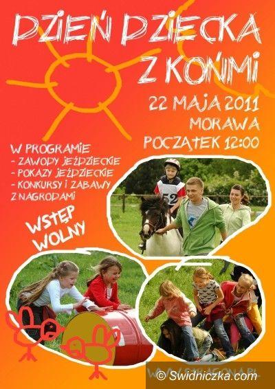 Morawa: Piknik rodzinny z końmi