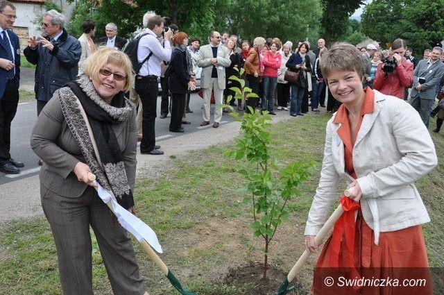 Krzyżowa: Zasadzą drzewo z okazji setnych urodzin