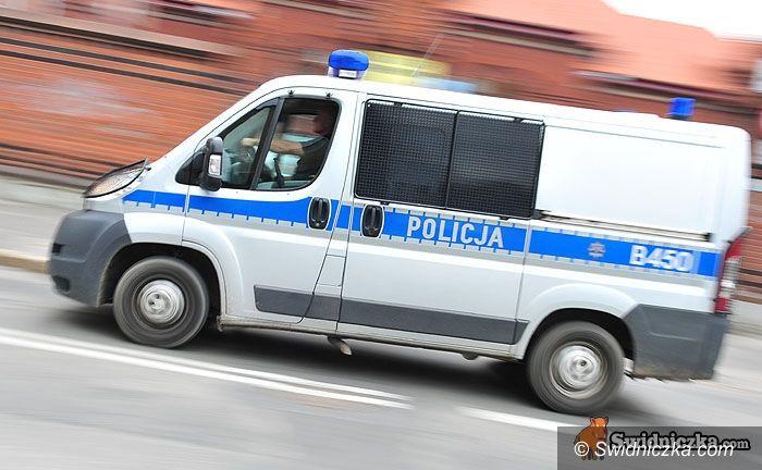 Świebodzice: Złodzieja ciuchów odnalazł policyjny pies