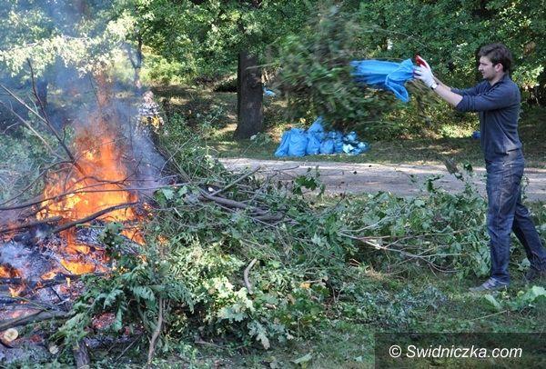 Świdnica: Flesza Nowomłyńska wysprzątana