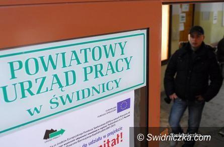 Świdnica/ Polska: Fachowcy wykwalifikowani potrzebni od zaraz