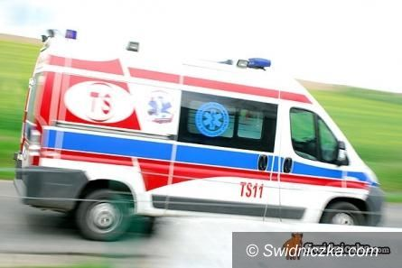 Powiat: Promocja zdrowia w Świdnicy