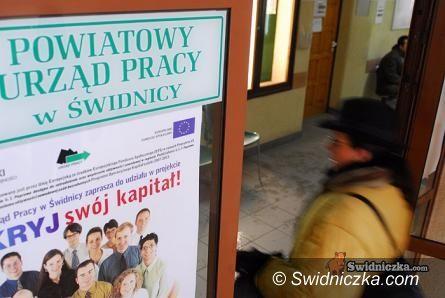 Świdnica: Giełda pracy w Powiatowym Urzędzie Pracy