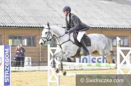 Strzegom: Strzegom Horse Trials: Puchar Narodów w Strzegomiu