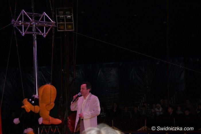 Świdnica: Co za cyrk! Arlekin w naszym mieście