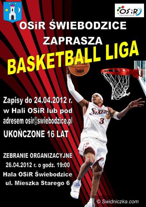 Świebodzice: Świebodzicka Basketball Liga