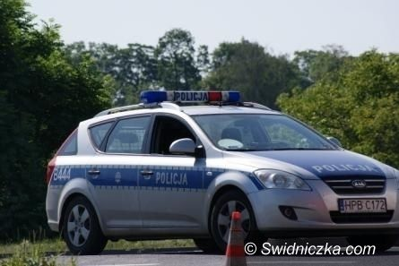 Gmina Strzegom: Skradł 16 jagniąt z gospodarstwa rolnego