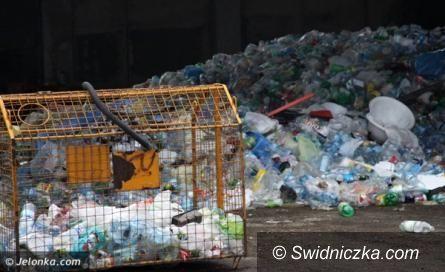 """Świdnica: """"Rewolucja śmieciowa"""" – deklaracje do końca kwietnia"""