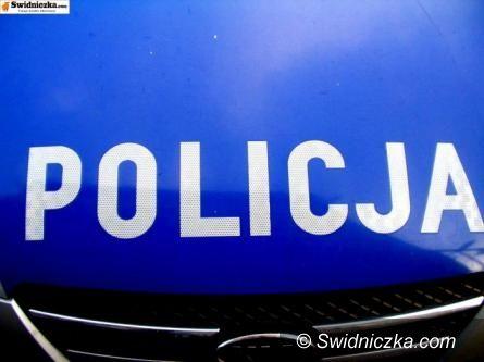 Świdnica: Nieletni złodziej i włamywacz ujęty
