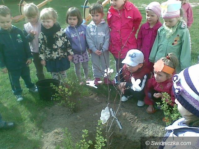 """Pszenno: """"Zielona Piosenka"""" w Bajkowej Dolince"""