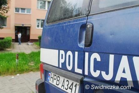 Wałbrzych: 4–letnia dziewczynka wypadła przez okno. Opiekun był pijany