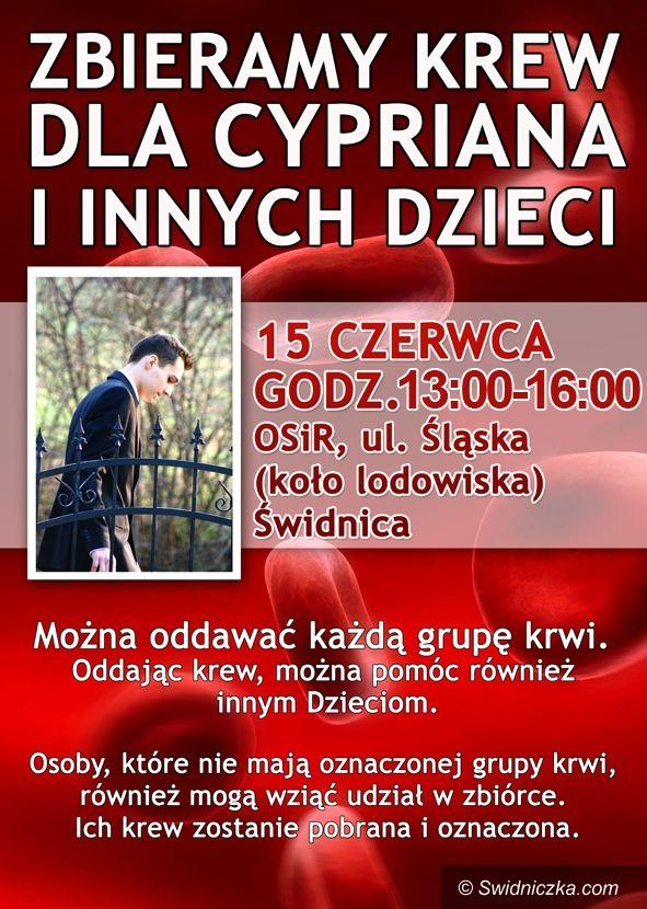 Świdnica: Pomoc dla Cypriana – przyłącz się do akcji!