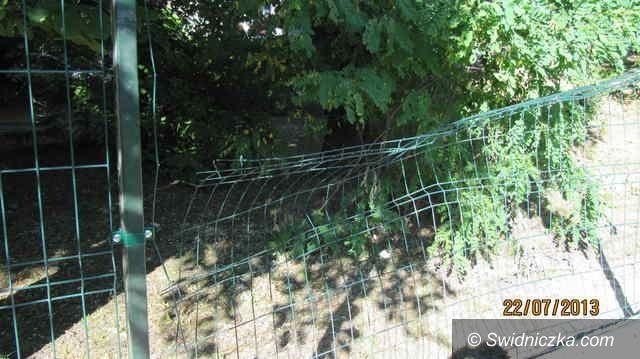 Świebodzice: Wandale zniszczyli nowe ogrodzenie