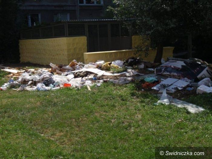 Świdnica: Teren wokół śmietnika przy ul. Zamenhofa zostanie wysprzątany