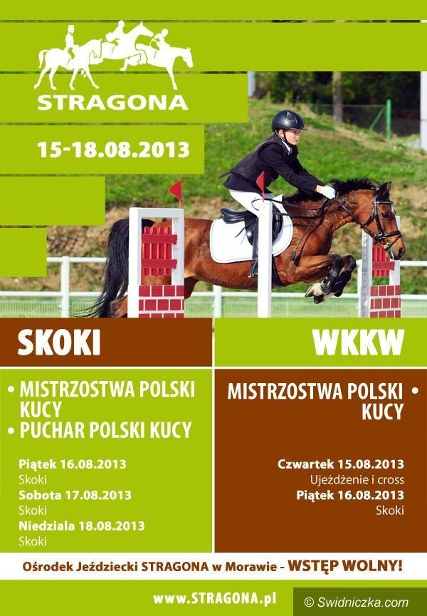 Morawa: Wielkie zawody kucykowe w Stragonie