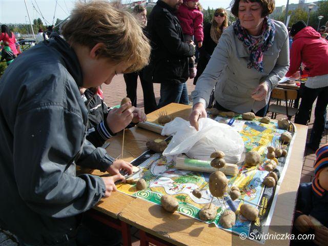 Świebodzice: Słoneczne Święto Ziemniaka w Świebodzicach