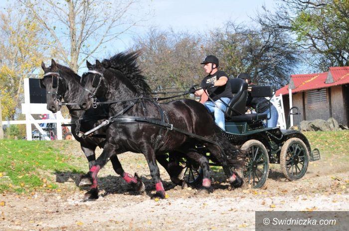 Morawa: Hubertus 2013 w Stragonie