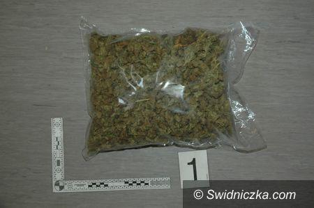 Tworzyjanów: Ujawnili 2,5 tysiąca porcji marihuany